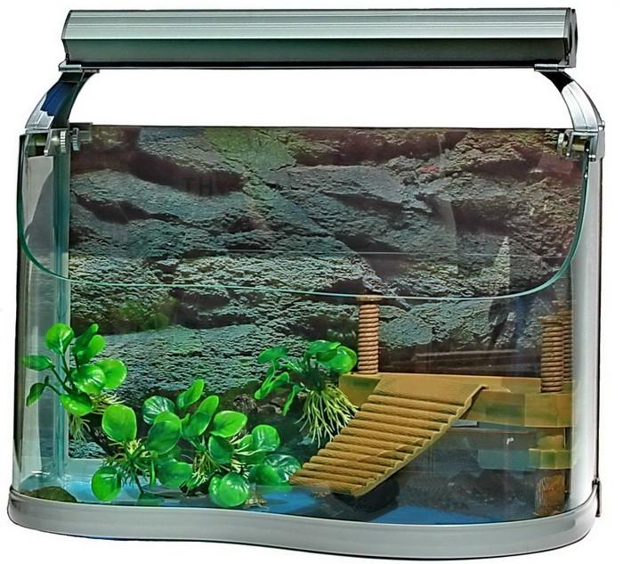 Акватеррариум для черепахи  фото